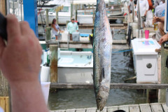 Blue Water Open Charity Offshore Fishing Tournament - IMG_4328