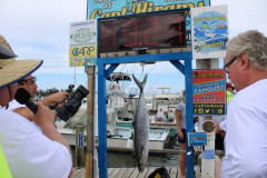 Blue Water Open Charity Offshore Fishing Tournament - IMG_4409